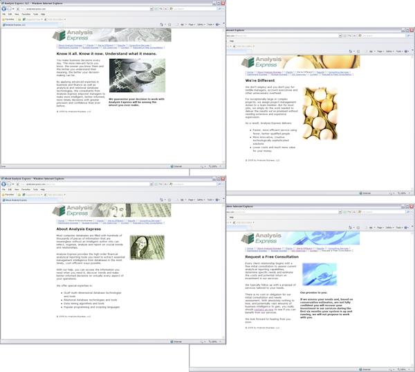 Analysis Express website screen shots